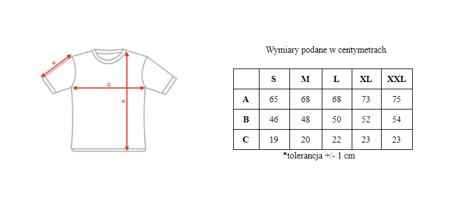 283a0a1804a6f TOMMY HILFIGER koszulka męska T9 ...